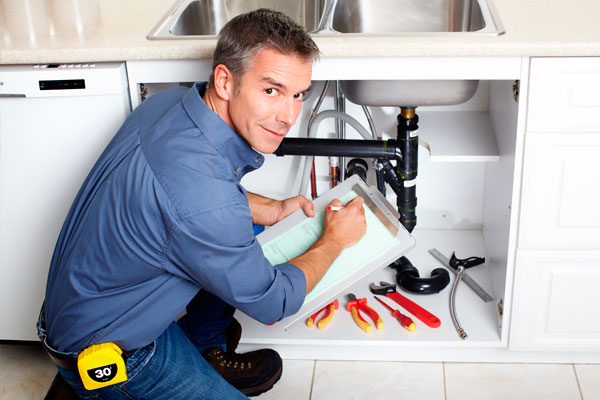 Plumbing/Electrical Inspections